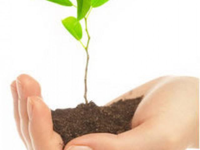 Meio Ambiente e Progresso, um desafio á sustentabilidade