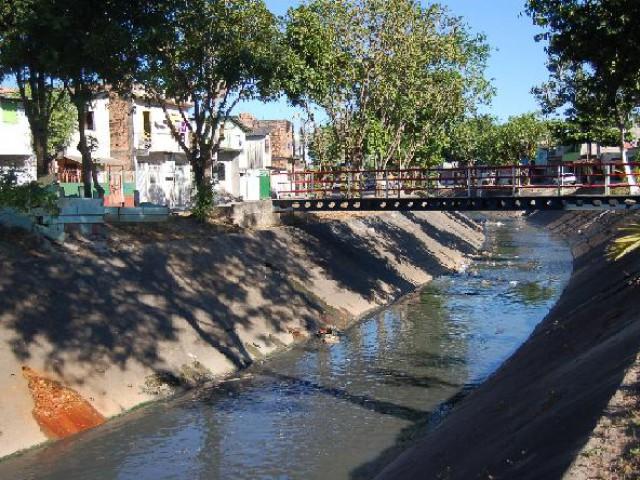 Qualidade ambiental e riqueza de invertebrados diminuem em igarapés de Manaus